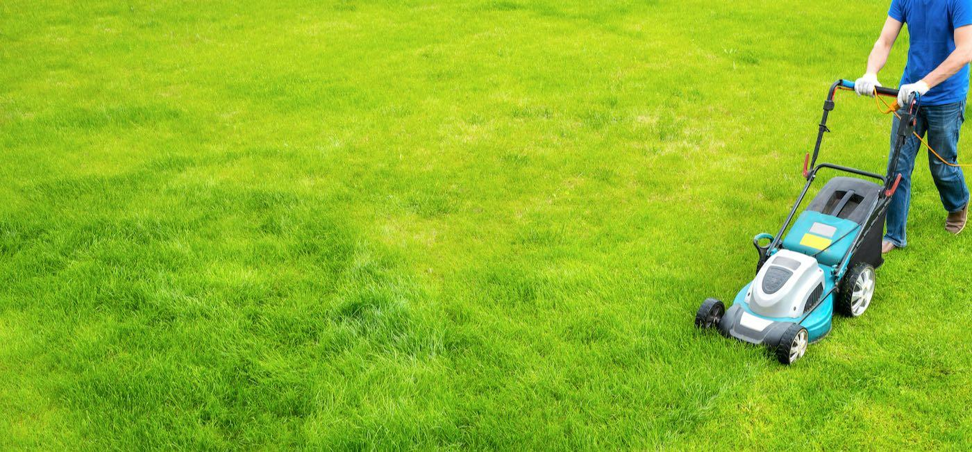 10 Best Lawn Care Services In Richmond Va Lawn Mowing And Maintenance